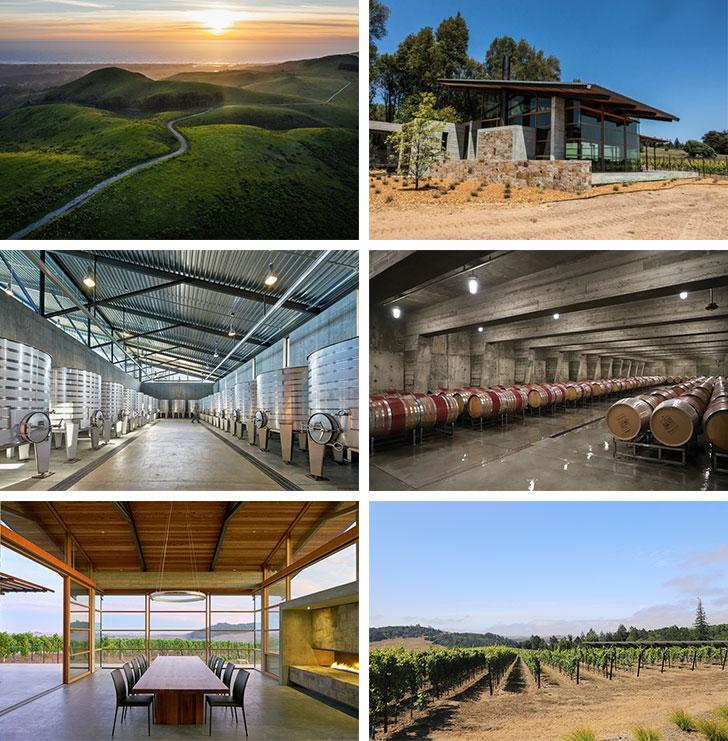 新ブランドOccidental Winesオクシデンタル・ワインズ