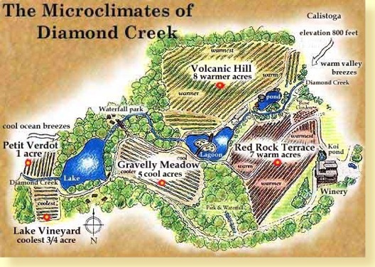 Diamond Creek Vineyard Map